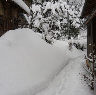 勝手口までの雪