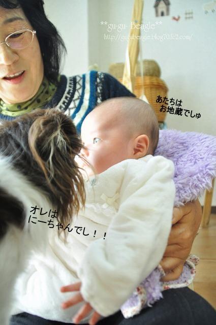 10_20120113204408.jpg