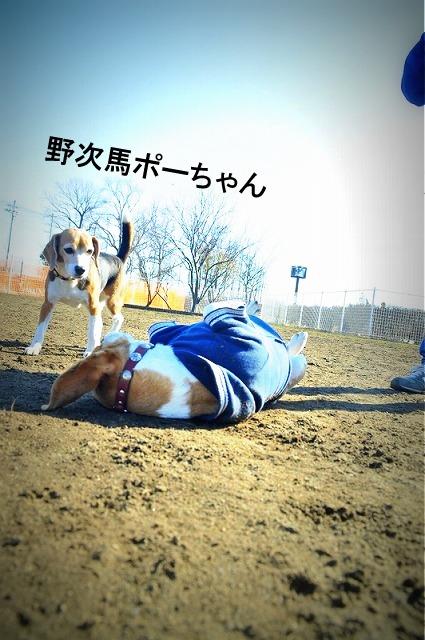 10_20120130220642.jpg