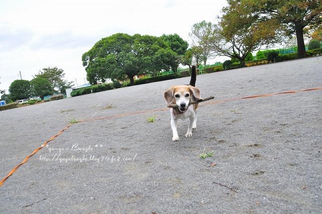 12_20111024205420.jpg