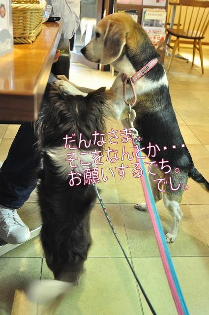 12_20120227003531.jpg