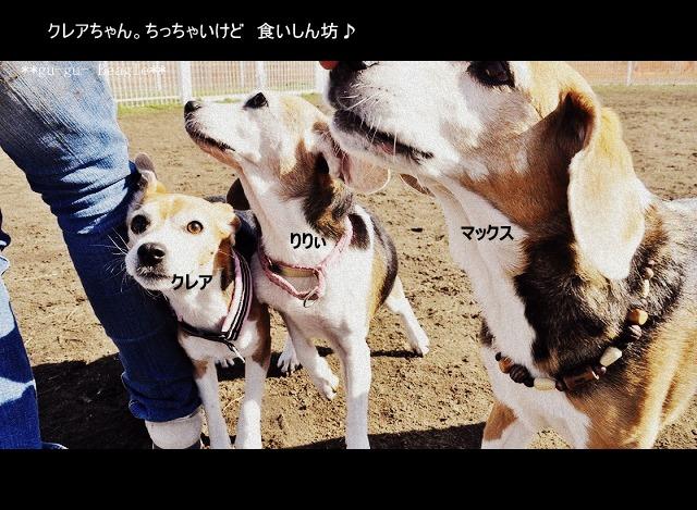 16_20120130221412.jpg