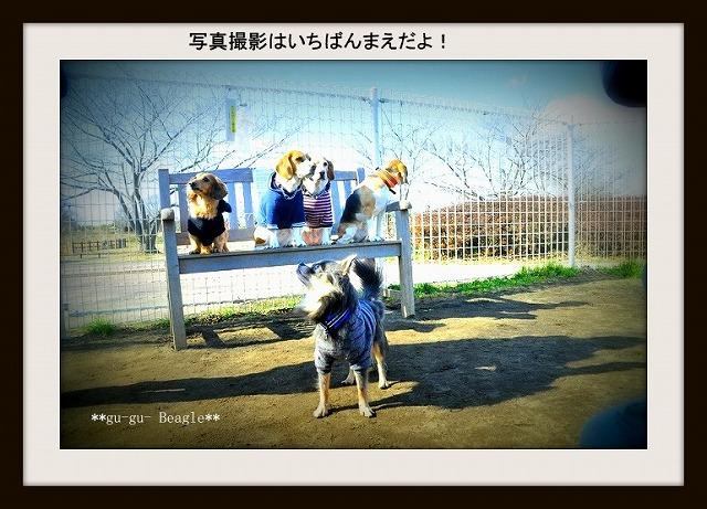 18_20120130224155.jpg