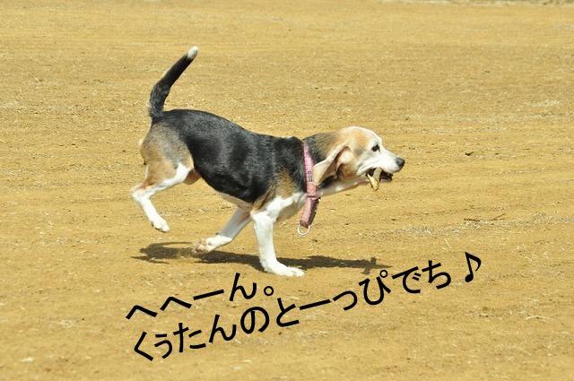 21_20120316190451.jpg