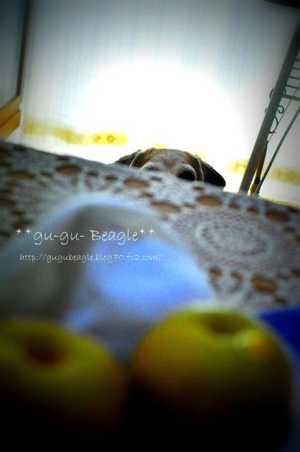2_20110818163459.jpg