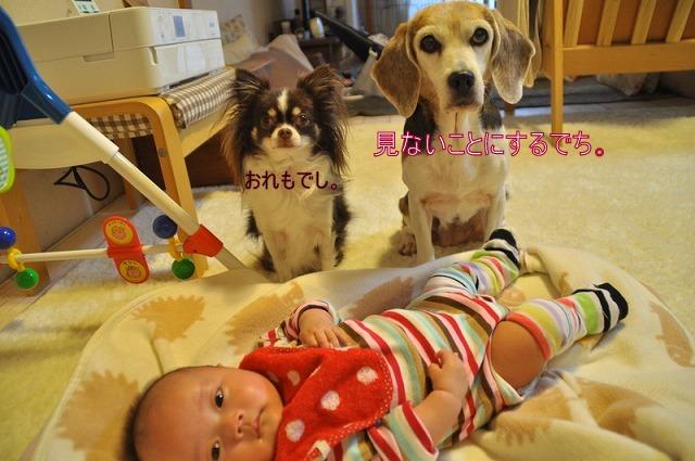3_20120220223715.jpg