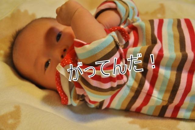 4_20120220223715.jpg