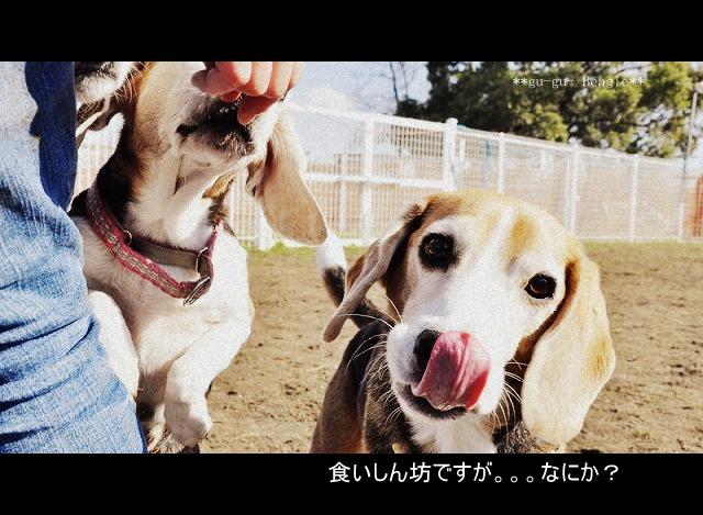 8_20120130220643.jpg