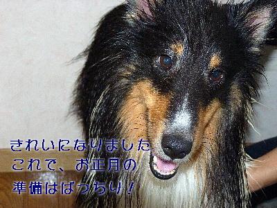 100101_02.jpg