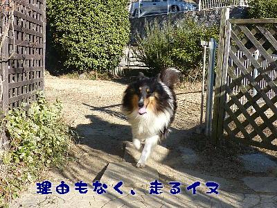 100114_01.jpg