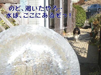 100114_02.jpg