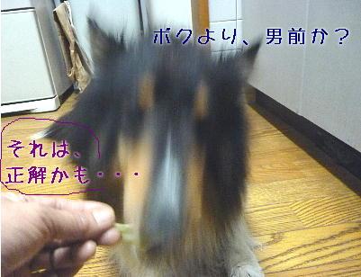 110428_06.jpg