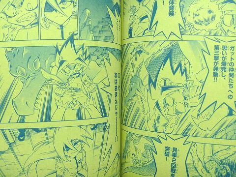 book20101115P1010463.jpg