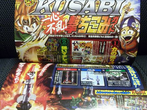 books20110115P1010852.jpg
