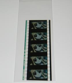 p8210121.jpg