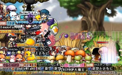 Maple100104_220254.jpg