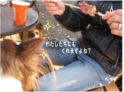 コピー ~ 紅葉2