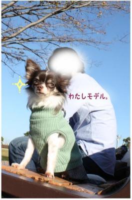 コピー (5) ~ 撮影