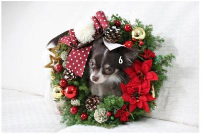 コピー (6) ~ クリスマス