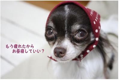 コピー (3) ~ 家政婦
