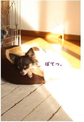 コピー (2) ~ おつとめ