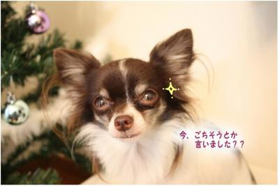 コピー (5) ~ クリスマス