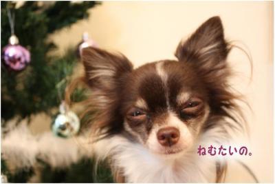 コピー (4) ~ クリスマス