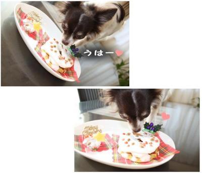 コピー (6) ~ おうちクリスマス