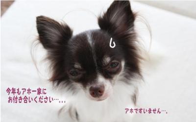 コピー (5) ~ 大晦日