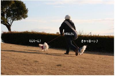 コピー (5) ~ 中央さんぽ