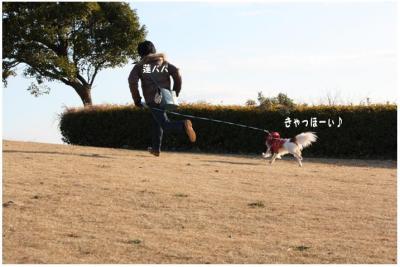 コピー (4) ~ 中央さんぽ