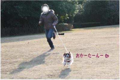 コピー (10) ~ 中央さんぽ
