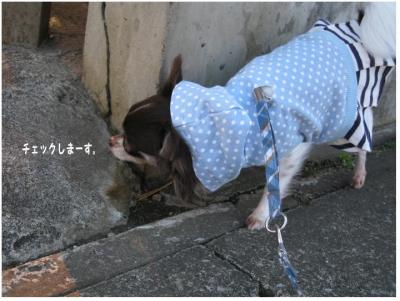 コピー (3) ~ あったかさんぽ