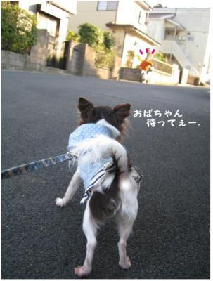 コピー (4) ~ あったかさんぽ