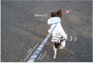 コピー (2) ~ あったかさんぽ