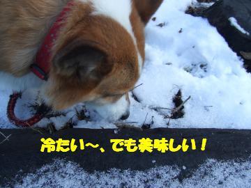 雪食べチョコ