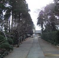 参道2010_0129東観音寺0039