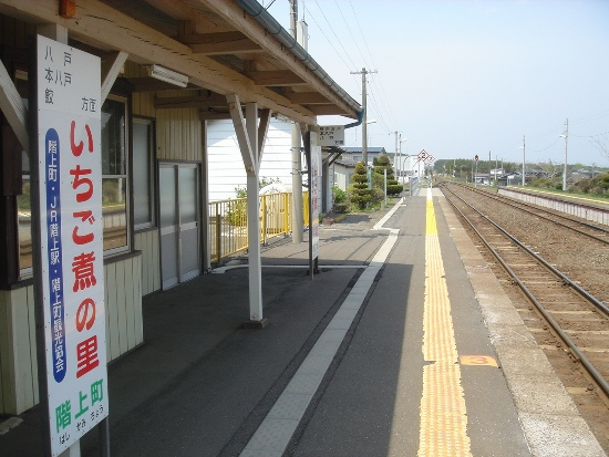 hasikamiDSC00125.jpg
