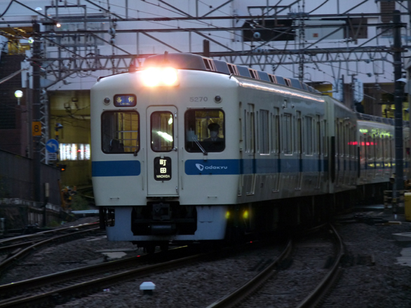 P1150378.jpg