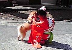20111009秋祭り