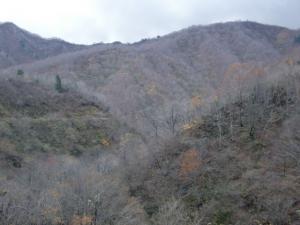 高倉峠 017