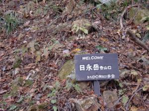 神埼渓谷 008