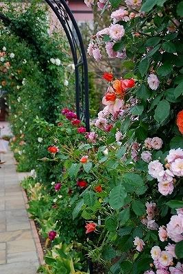 花園『FOREST』