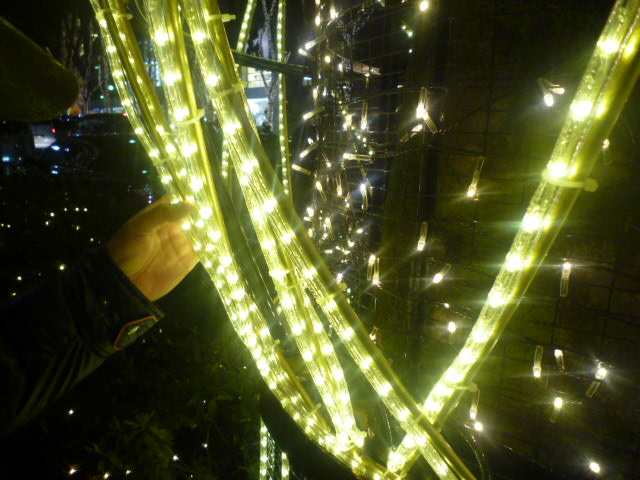 LED電球に なりました♪