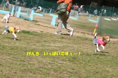 21 IMG_2216