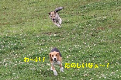 5 IMG_3604