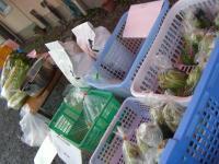 産直野菜a
