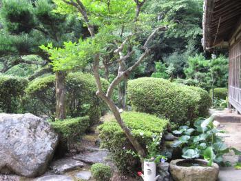 丹後・篠山11.jpg