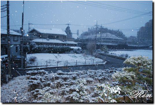 今朝も大雪!