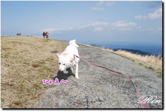 風がすごいです!